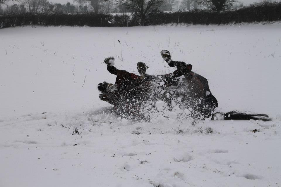 frolicking-in-the-snow